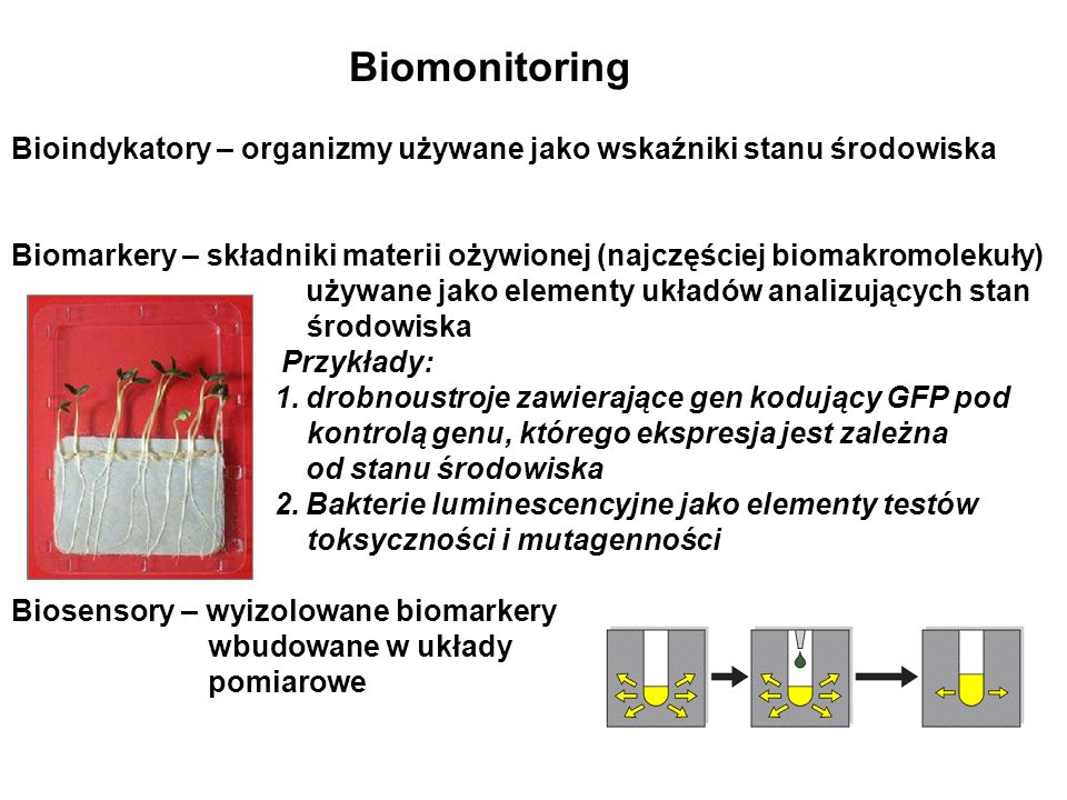 Biologiczne oczyszczanie ścieków Zastosowanie drobnoustrojów do eliminacji ze ścieków związków organicznych, związków azotu (sole amonowe, azotany, azotyny), nieorganicznych związków fosforu.