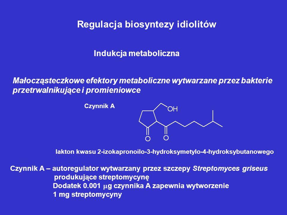 Indukcja substratowa 1.Biosynteza cefalosporyny C w C. acremonium – obecność w podłożu DL -cysteiny lub DL -norleucyny 2.Biosynteza alkaloidów sporysz