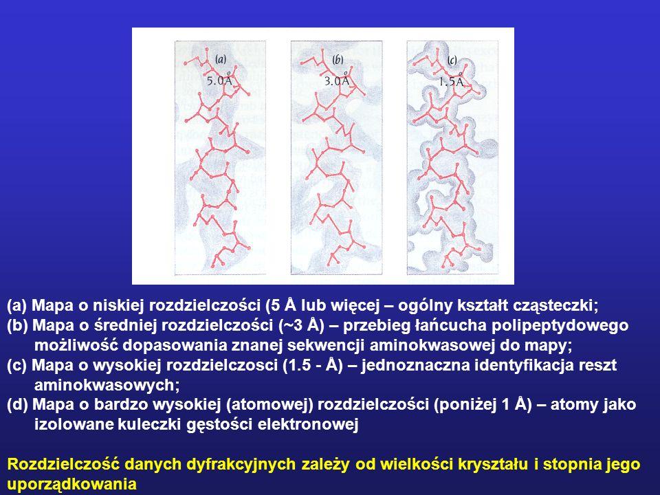 (a) Mapa o niskiej rozdzielczości (5 Å lub więcej – ogólny kształt cząsteczki; (b) Mapa o średniej rozdzielczości (~3 Å) – przebieg łańcucha polipepty