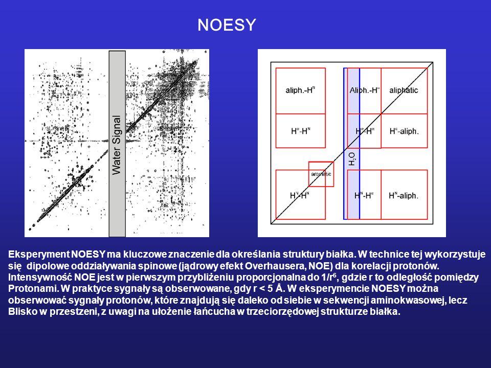 Eksperyment NOESY ma kluczowe znaczenie dla określania struktury białka. W technice tej wykorzystuje się dipolowe oddziaływania spinowe (jądrowy efekt