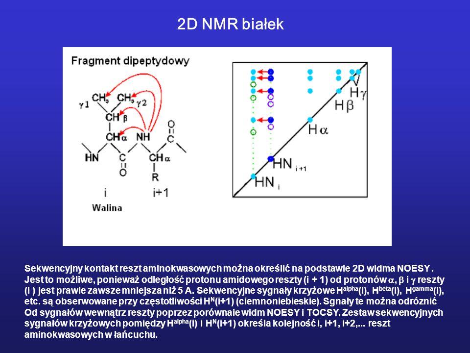 Sekwencyjny kontakt reszt aminokwasowych można określić na podstawie 2D widma NOESY. Jest to możliwe, ponieważ odległość protonu amidowego reszty (i +