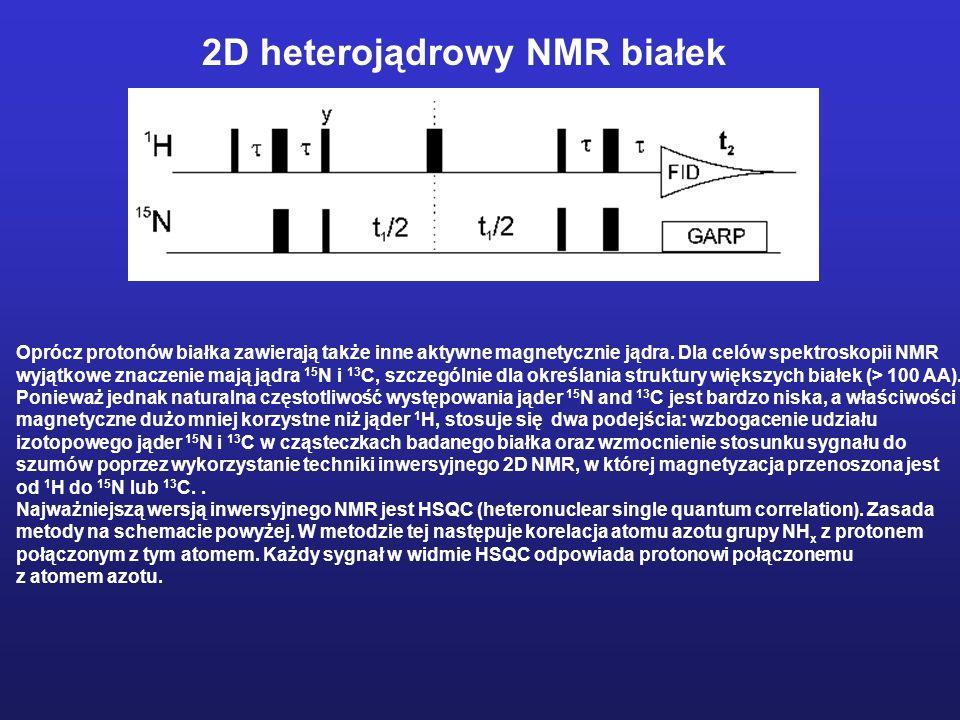 2D heterojądrowy NMR białek Oprócz protonów białka zawierają także inne aktywne magnetycznie jądra. Dla celów spektroskopii NMR wyjątkowe znaczenie ma