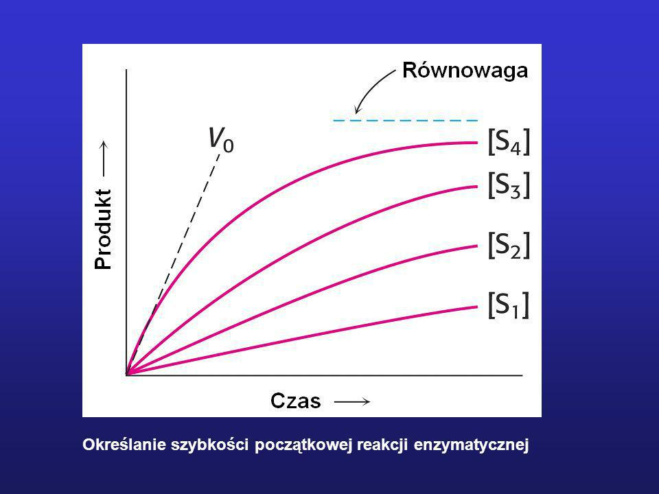 Zmiany w stężeniach uczestników reakcji enzymatycznej w warunkach stanu stacjonarnego
