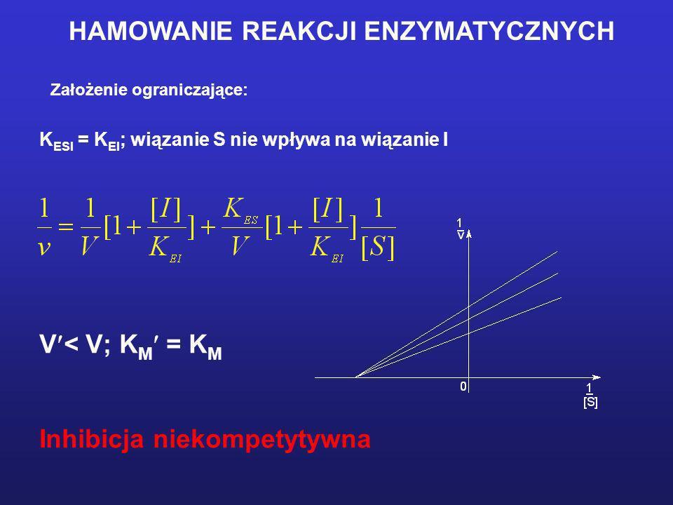 HAMOWANIE REAKCJI ENZYMATYCZNYCH Założenie ograniczające: K ESI = K EI ; wiązanie S nie wpływa na wiązanie I V < V; K M = K M Inhibicja niekompetytywn