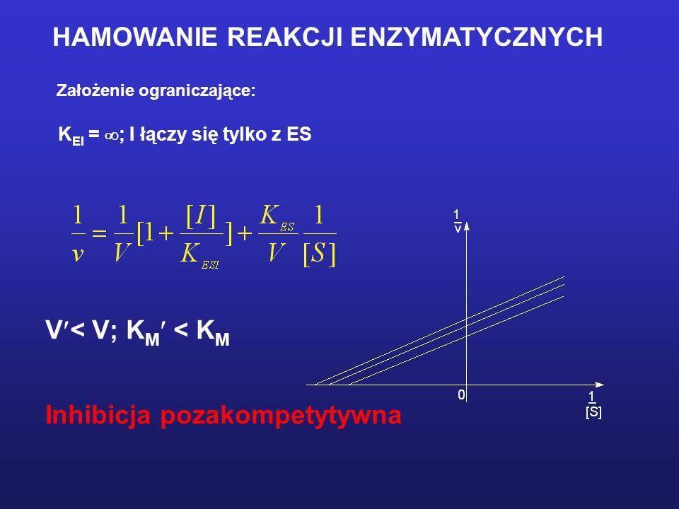 HAMOWANIE REAKCJI ENZYMATYCZNYCH Założenie ograniczające: K EI = ; I łączy się tylko z ES V < V; K M < K M Inhibicja pozakompetytywna