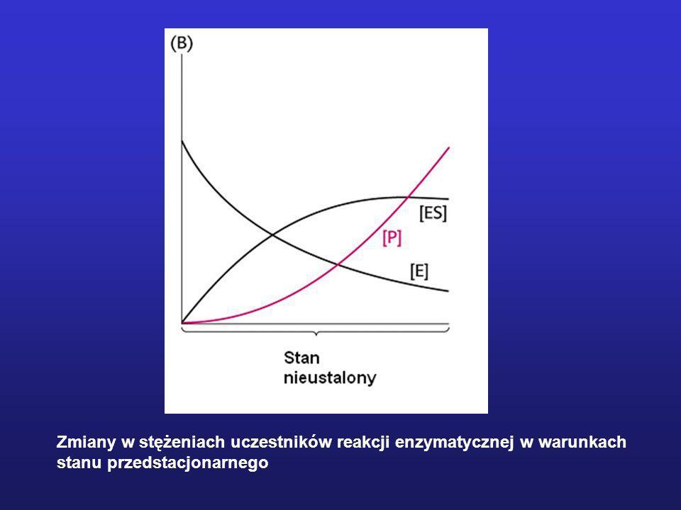 MODEL OGÓLNY WIĄZANIA K A i K B – stałe Michaelisa dla każdego z substratów przy wysycających stężeniach drugiedrugiego substratu V – szybkość maksymalna przy wysycających stężeniach obu substratów RÓWNANIA KINETYCZNE - dla mechanizmu tworzenia kompleksu - - dla mechanizmu ping-pong