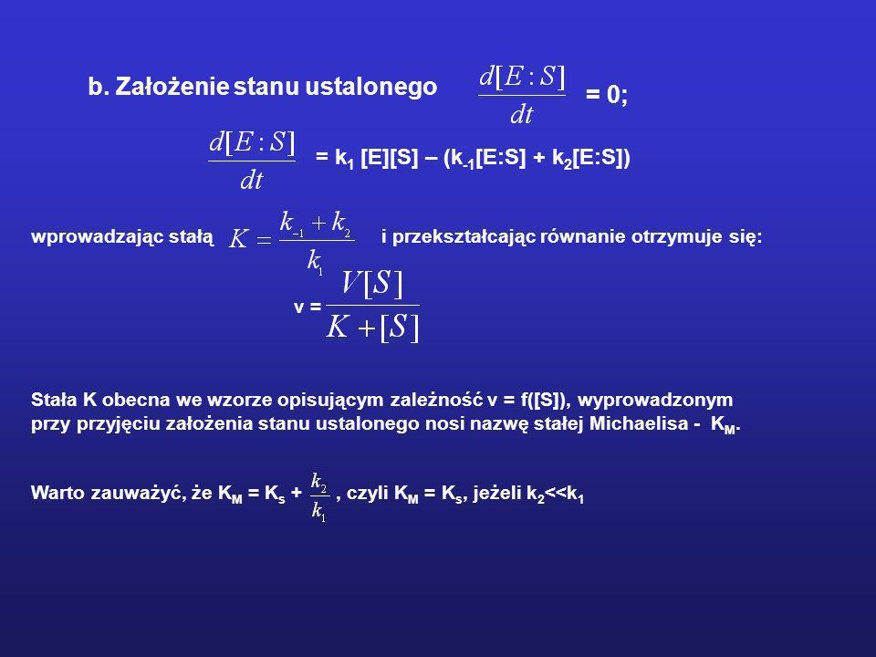 b. Założenie stanu ustalonego = 0; = k 1 [E][S] – (k -1 [E:S] + k 2 [E:S]) wprowadzając stałą i przekształcając równanie otrzymuje się: v = Stała K ob