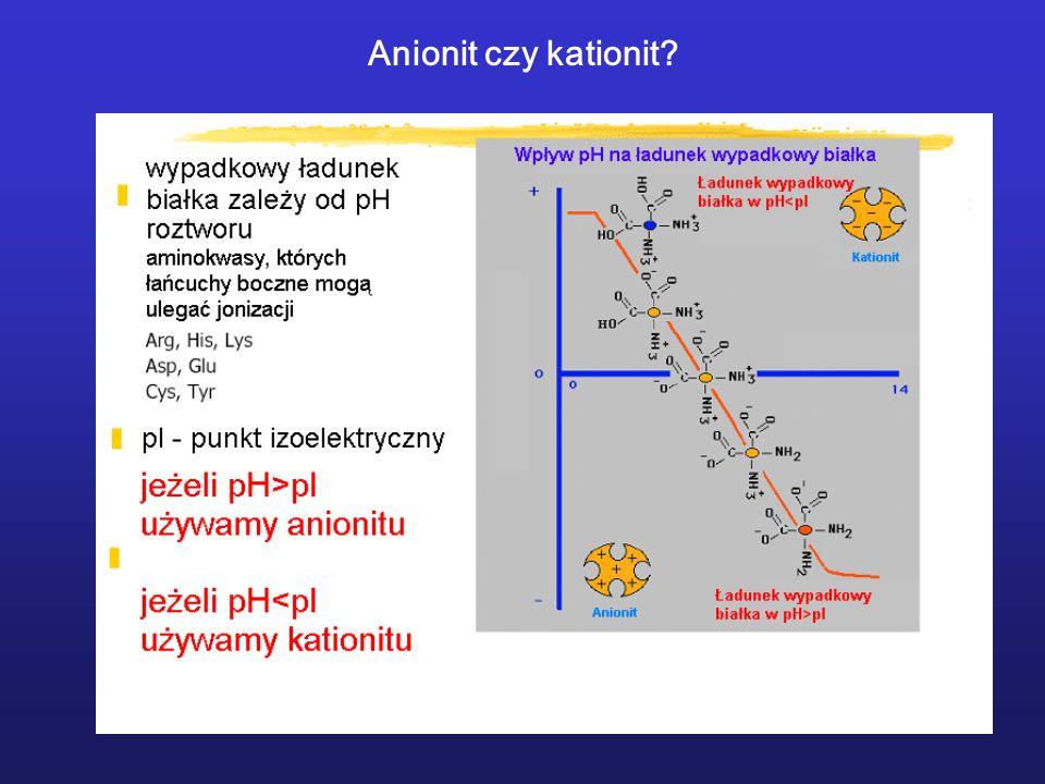 Anionit czy kationit?
