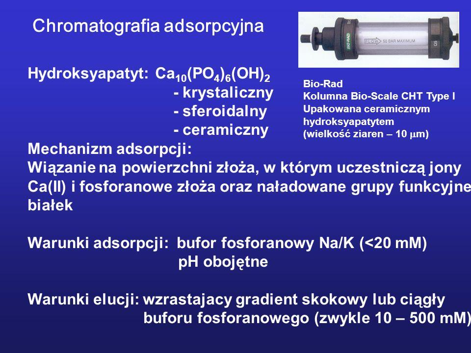 Hydroksyapatyt: Ca 10 (PO 4 ) 6 (OH) 2 - krystaliczny - sferoidalny - ceramiczny Mechanizm adsorpcji: Wiązanie na powierzchni złoża, w którym uczestni