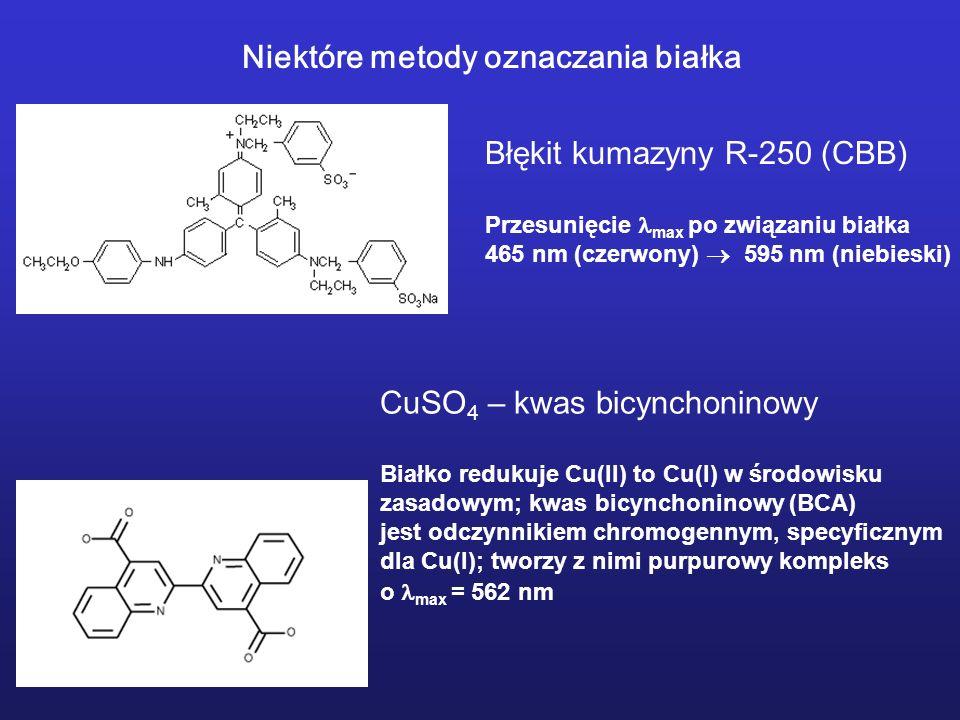 Błękit kumazyny R-250 (CBB) Przesunięcie max po związaniu białka 465 nm (czerwony) 595 nm (niebieski) CuSO 4 – kwas bicynchoninowy Białko redukuje Cu(