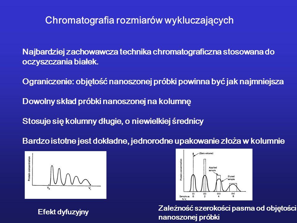 Chromatografia rozmiarów wykluczających Najbardziej zachowawcza technika chromatograficzna stosowana do oczyszczania białek. Ograniczenie: objętość na