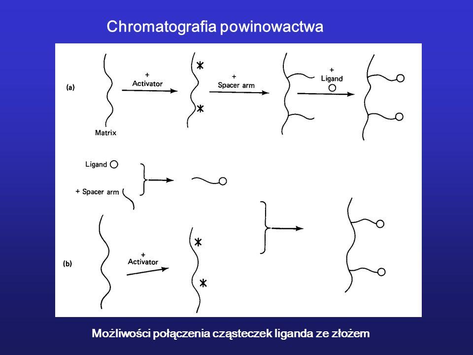 Chromatografia powinowactwa Możliwości połączenia cząsteczek liganda ze złożem
