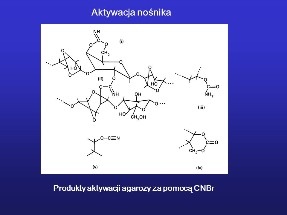 Produkty aktywacji agarozy za pomocą CNBr Aktywacja nośnika