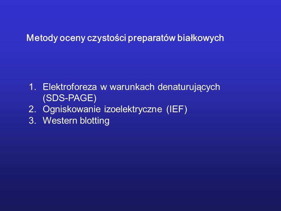 1.Elektroforeza w warunkach denaturujących (SDS-PAGE) 2.Ogniskowanie izoelektryczne (IEF) 3.Western blotting Metody oceny czystości preparatów białkow