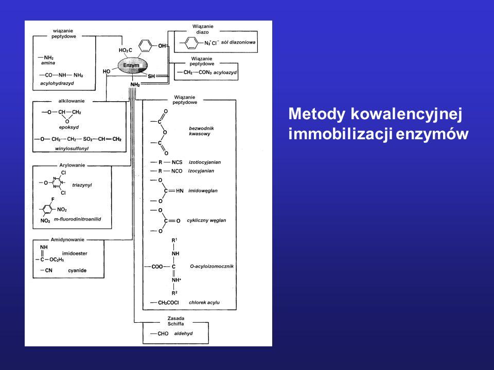 Metody kowalencyjnej immobilizacji enzymów