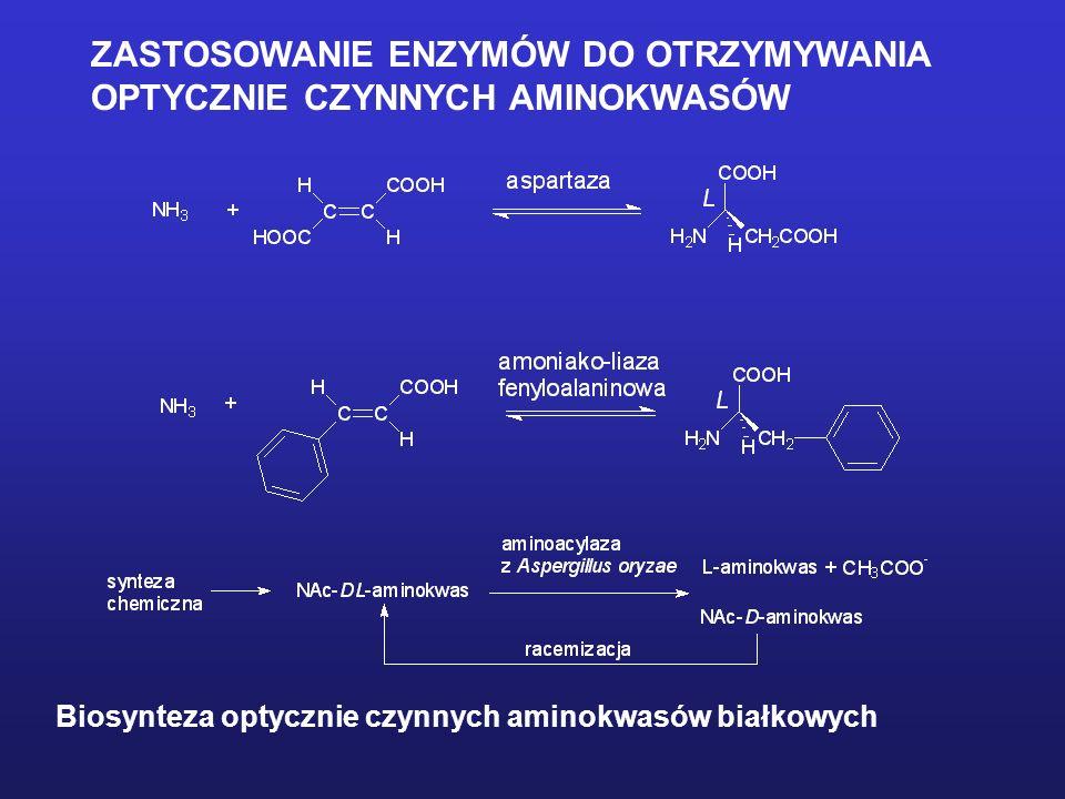 ZASTOSOWANIE ENZYMÓW DO OTRZYMYWANIA OPTYCZNIE CZYNNYCH AMINOKWASÓW Biosynteza optycznie czynnych aminokwasów białkowych