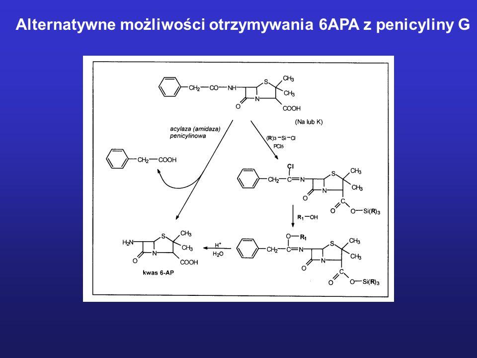 Alternatywne możliwości otrzymywania 6APA z penicyliny G