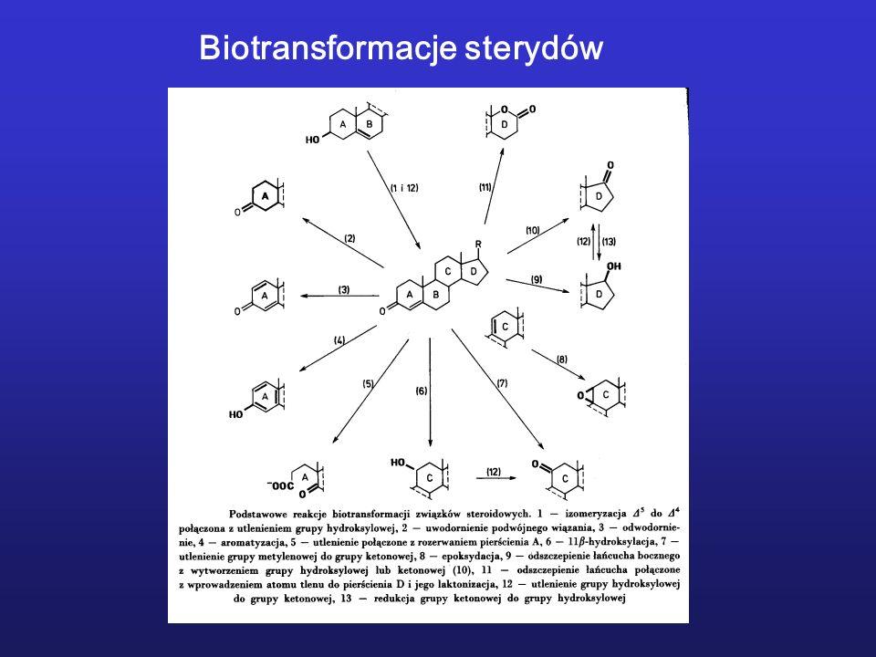 Biotransformacje sterydów