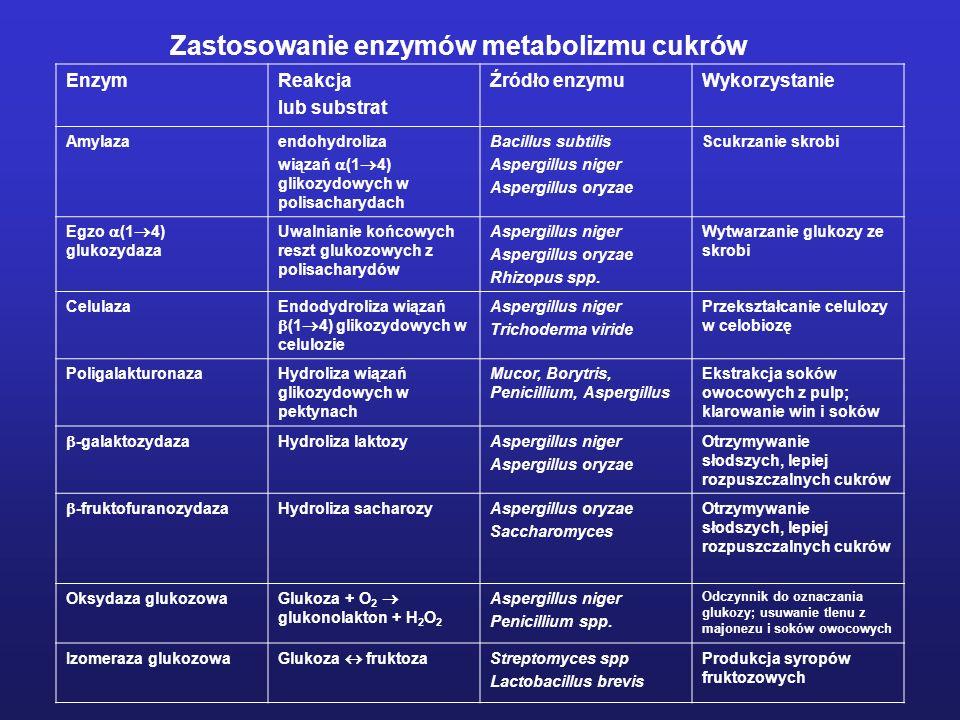 EnzymReakcja lub substrat Źródło enzymuWykorzystanie Amylazaendohydroliza wiązań (1 4) glikozydowych w polisacharydach Bacillus subtilis Aspergillus n