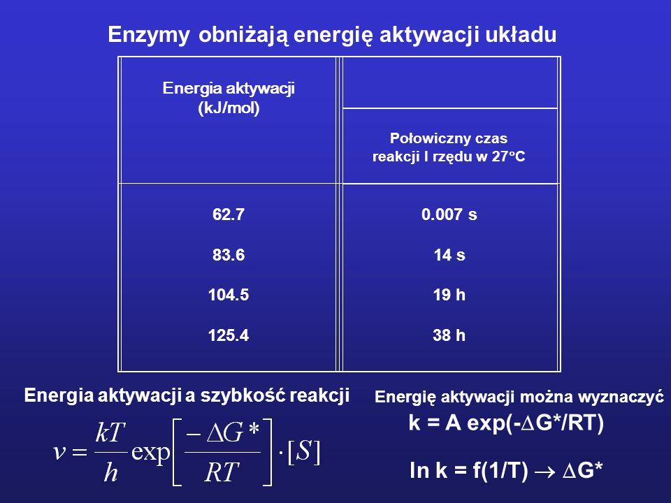 Szybkość reakcji enzymatycznej Enzym, podobnie jak każdy inny katalizator, przyśpiesza reakcję, ale nie zmienia jej stanu równowagi. Enzymy katalizują