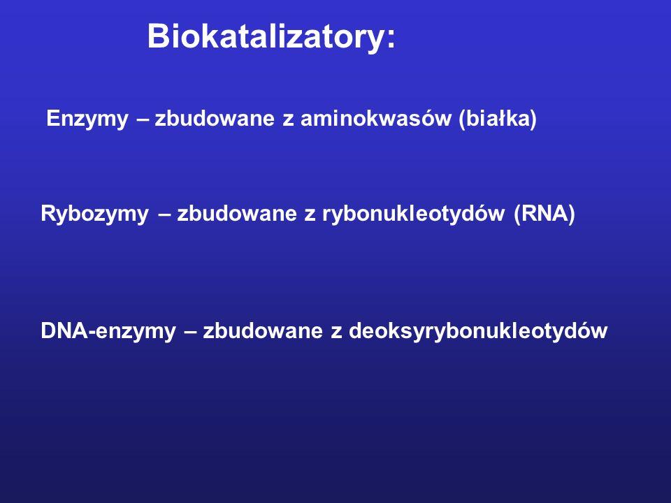Jony metali jako grupy prostetyczne enzymów Niektóre enzymy potrzebują pomocników...