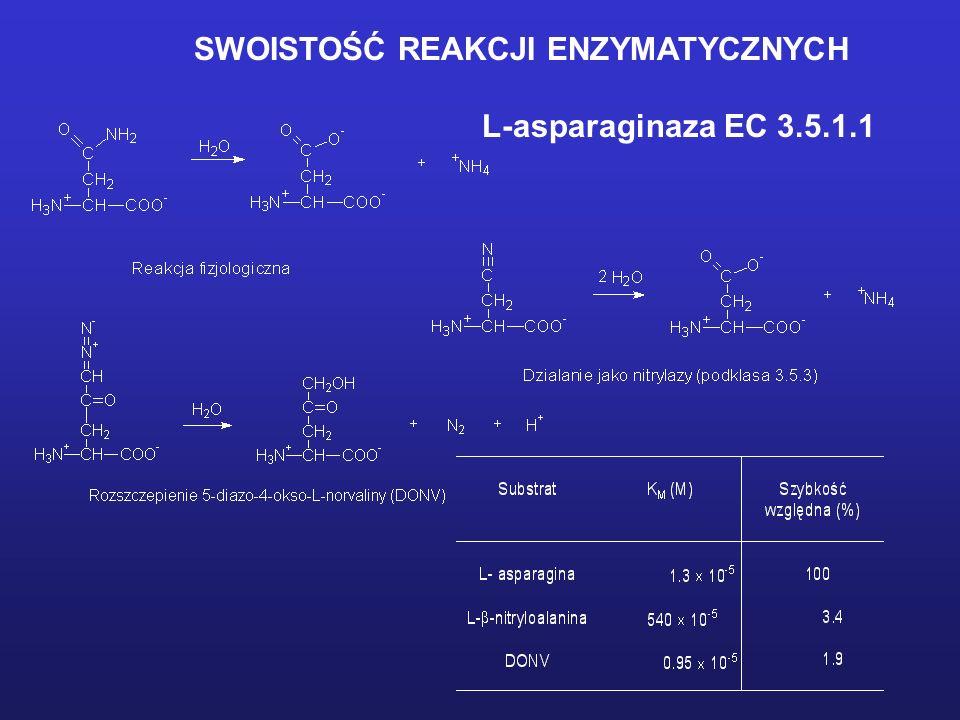 SWOISTOŚĆ REAKCJI ENZYMATYCZNYCH L-asparaginaza EC 3.5.1.1