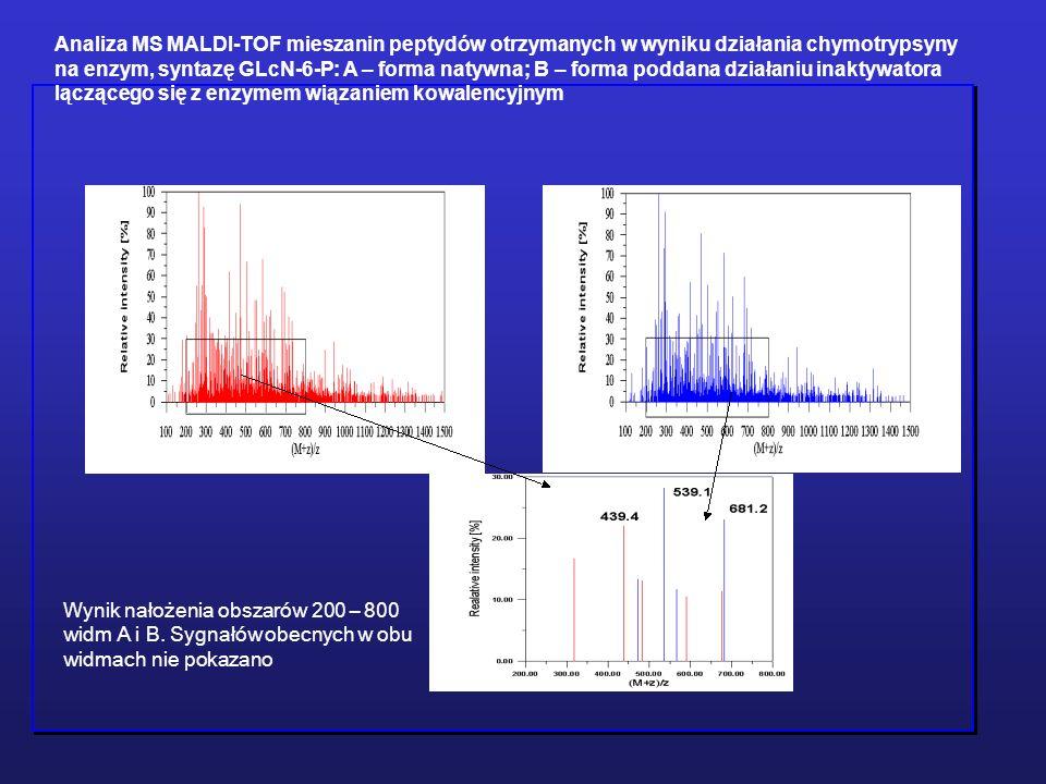 Wynik nałożenia obszarów 200 – 800 widm A i B. Sygnałów obecnych w obu widmach nie pokazano Analiza MS MALDI-TOF mieszanin peptydów otrzymanych w wyni