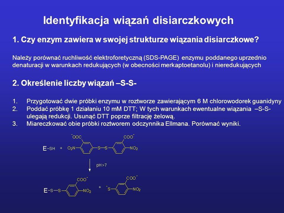 1. Czy enzym zawiera w swojej strukturze wiązania disiarczkowe? Należy porównać ruchliwość elektroforetyczną (SDS-PAGE) enzymu poddanego uprzednio den