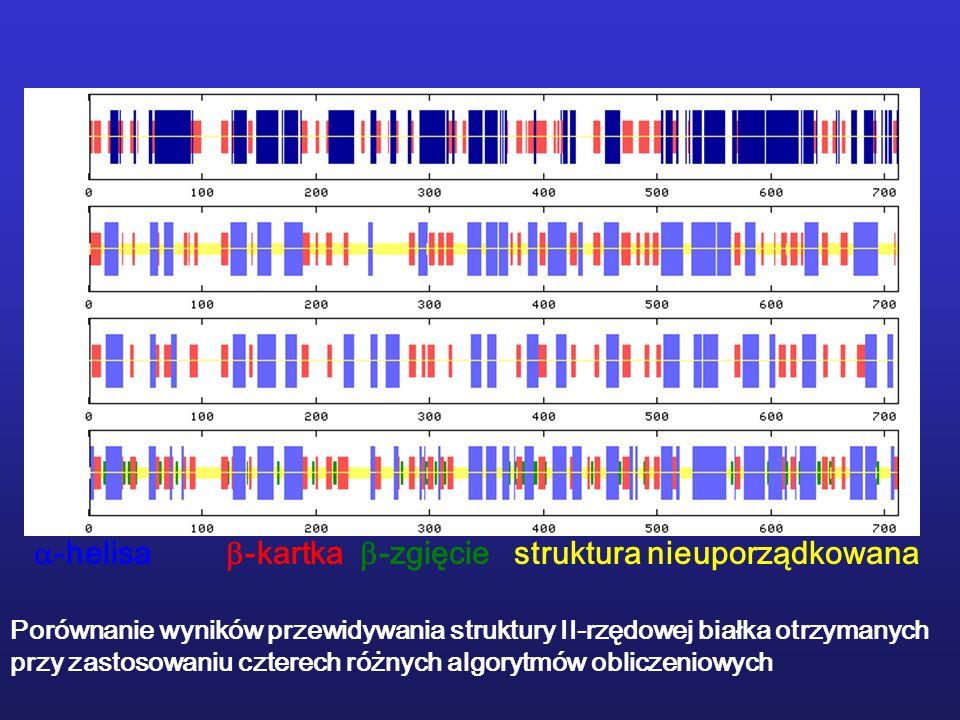 -helisa -kartka -zgięciestruktura nieuporządkowana Porównanie wyników przewidywania struktury II-rzędowej białka otrzymanych przy zastosowaniu czterec