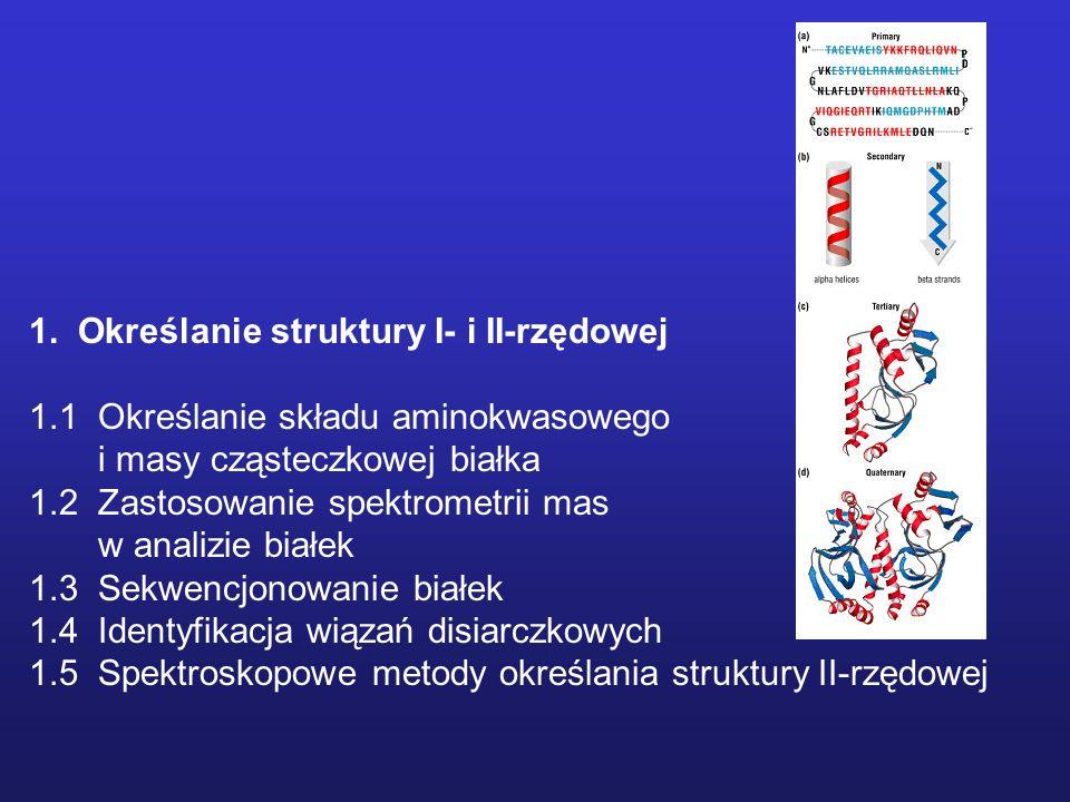Enzymatyczne metody rozszczepienia białek Zasady ogólne: - białka należy zdenaturować przed poddaniem ich trawieniu enzymatycznemu - należy używać lotnych buforów (można je usunąć poprze liofilizację) - należy używać enzymów proteolitycznych specjalnej jakości (sequencing grade) - warunki reakcji powinny być zoptymalizowane Enzymy wykorzystywane do specyficznego cięcia: Trypsyna – karboksylowa strona reszt Arg, Lys i S-aminoetylocysteiny; specyficzność można ograniczyć do Arg poprzez modyfikacje reszt lizyny np, bezwodnikiem kwasu bursztynowego; Chymotrypsyna – karboksylowa strona Phe, Trp, Tyr and Leu (w kolejności zmniejszającej się podatności) Termolizyna – aminowa strona Leu, Ile, Phe, Val Proteaza V8 ze S.