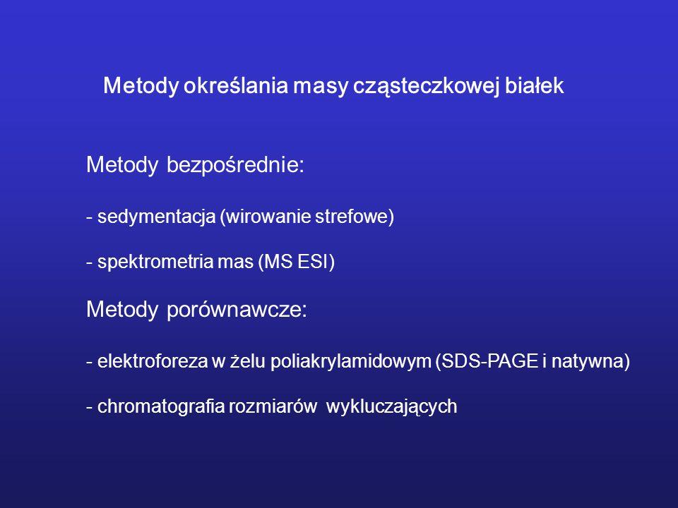 anhydraza węglanowa (29 kDa), BSA (66 kDa), dehydrogenaza alkoholowa (150 kDa), - amylaza (200 kDa), apofferrytyna (443 kDa), tyroglobulina (669 kDa).