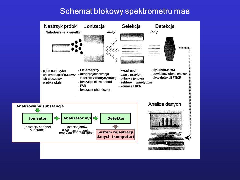 Porównanie sekwencji łańcuchów polipeptydowych w enzymach z różnych źródeł.