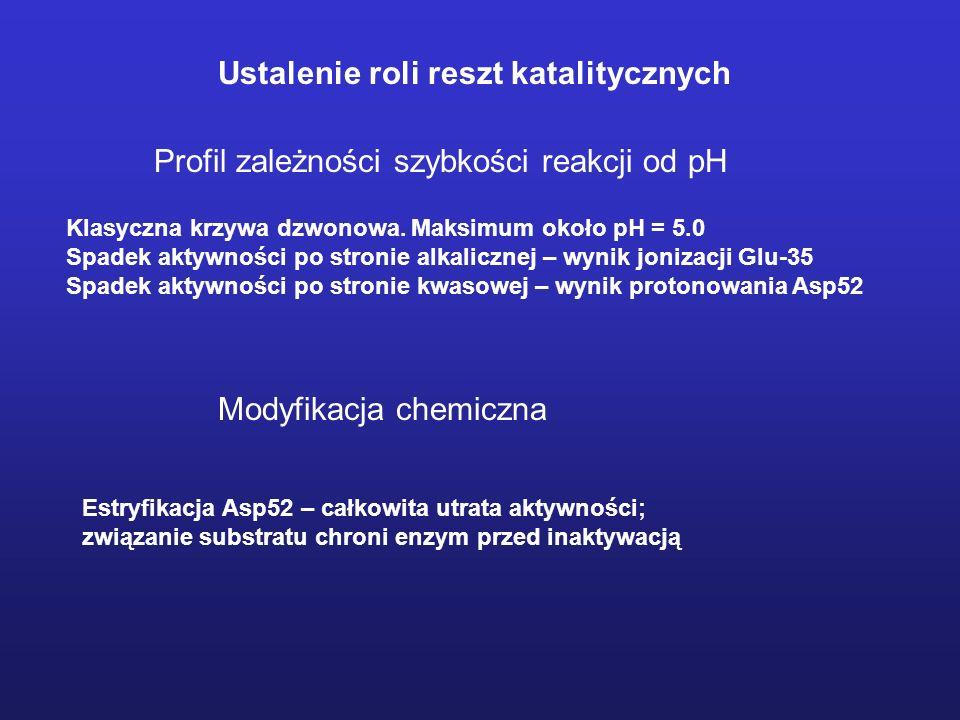 Określenie miejsca hydrolizy substratu Które wiązanie ulega hydrolizie.