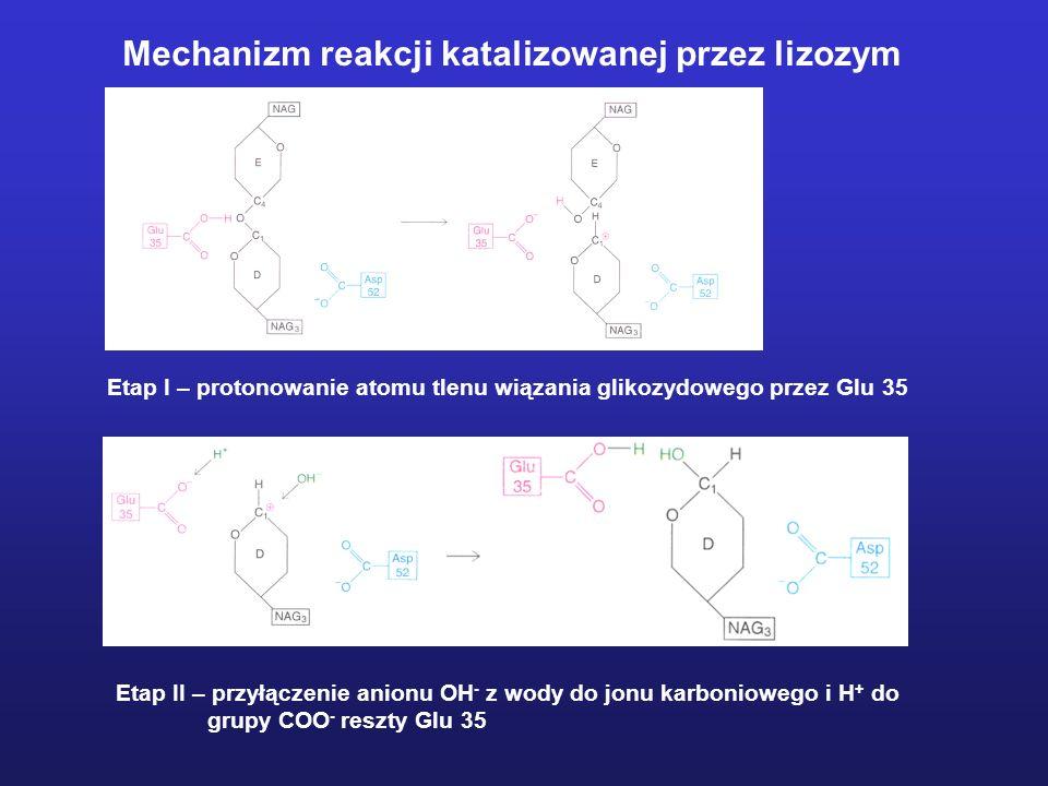 Ustalenie roli reszt katalitycznych Profil zależności szybkości reakcji od pH Klasyczna krzywa dzwonowa.