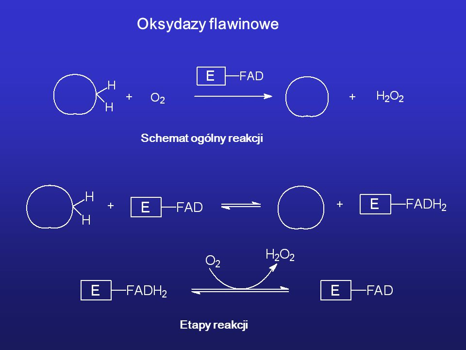 Oksydazy flawinowe Schemat ogólny reakcji Etapy reakcji