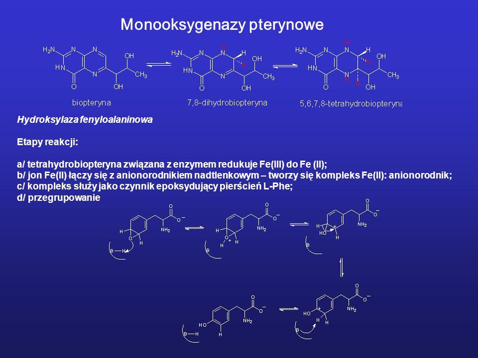 Monooksygenazy pterynowe Hydroksylaza fenyloalaninowa Etapy reakcji: a/ tetrahydrobiopteryna związana z enzymem redukuje Fe(III) do Fe (II); b/ jon Fe(II) łączy się z anionorodnikiem nadtlenkowym – tworzy się kompleks Fe(II): anionorodnik; c/ kompleks służy jako czynnik epoksydujący pierścień L-Phe; d/ przegrupowanie