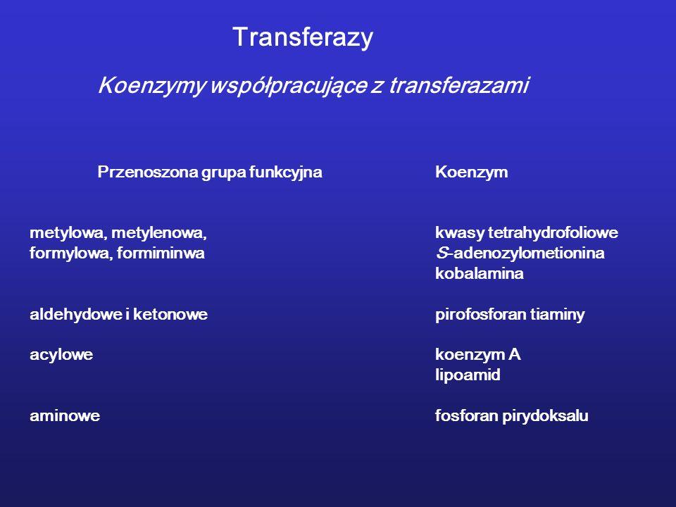 Transferazy Koenzymy współpracujące z transferazami Przenoszona grupa funkcyjnaKoenzym metylowa, metylenowa,kwasy tetrahydrofoliowe formylowa, formiminwaS-adenozylometionina kobalamina aldehydowe i ketonowepirofosforan tiaminy acylowekoenzym A lipoamid aminowefosforan pirydoksalu