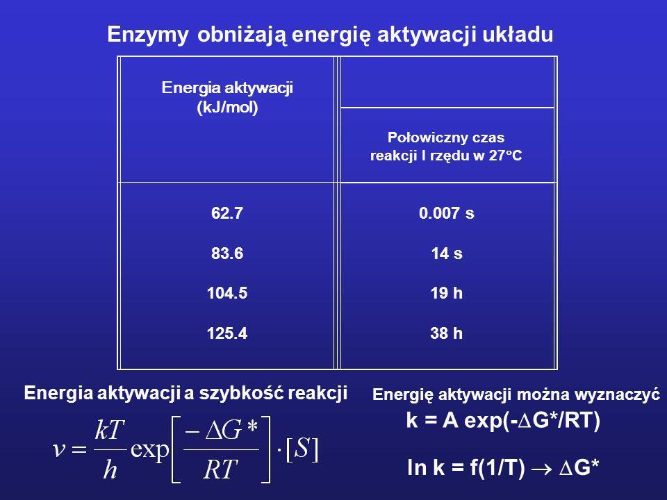 Energia aktywacji (kJ/mol) Połowiczny czas reakcji I rzędu w 27 C 62.7 83.6 104.5 125.4 0.007 s 14 s 19 h 38 h Enzymy obniżają energię aktywacji układ