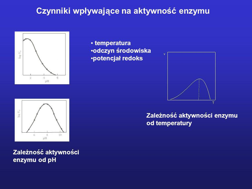Czynniki wpływające na aktywność enzymu temperatura odczyn środowiska potencjał redoks Zależność aktywności enzymu od pH Zależność aktywności enzymu o
