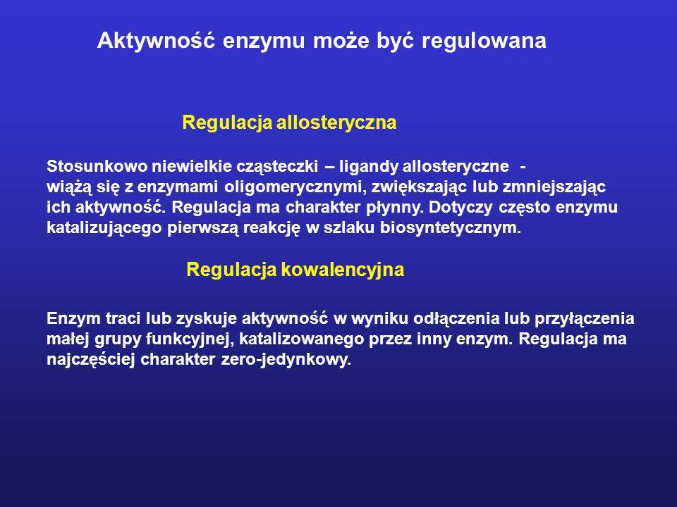 Aktywność enzymu może być regulowana Regulacja allosteryczna Stosunkowo niewielkie cząsteczki – ligandy allosteryczne - wiążą się z enzymami oligomery