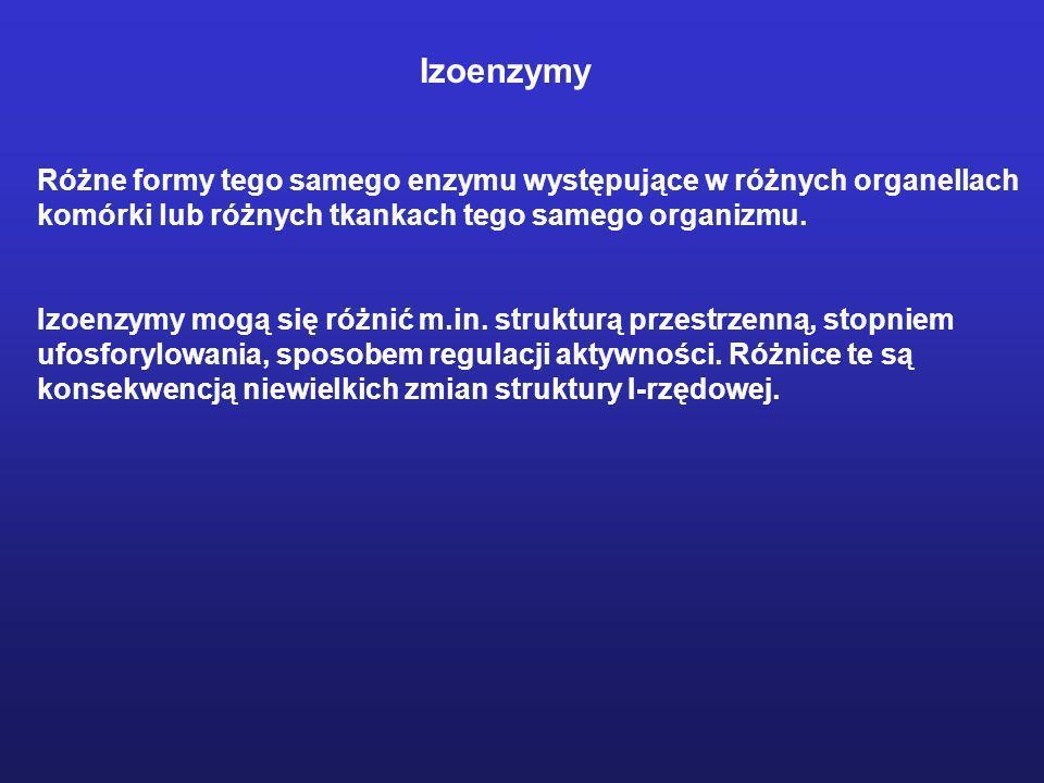 Izoenzymy Różne formy tego samego enzymu występujące w różnych organellach komórki lub różnych tkankach tego samego organizmu. Izoenzymy mogą się różn