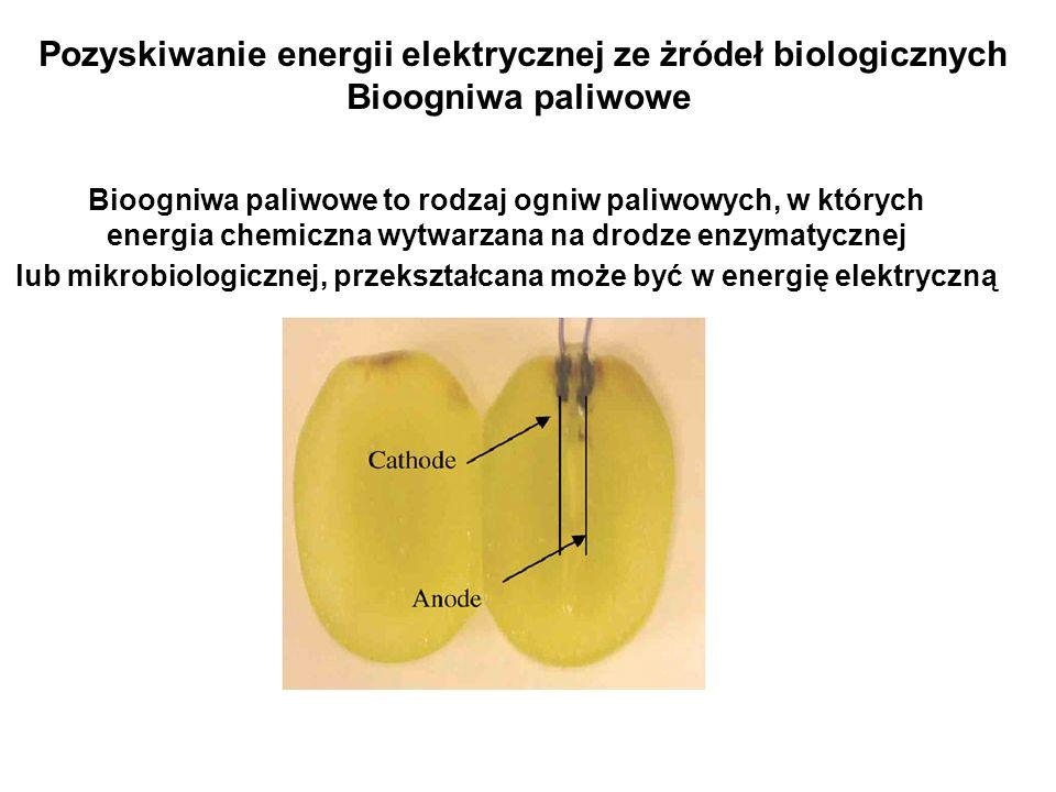 Bioogniwa paliwowe to rodzaj ogniw paliwowych, w których energia chemiczna wytwarzana na drodze enzymatycznej lub mikrobiologicznej, przekształcana mo