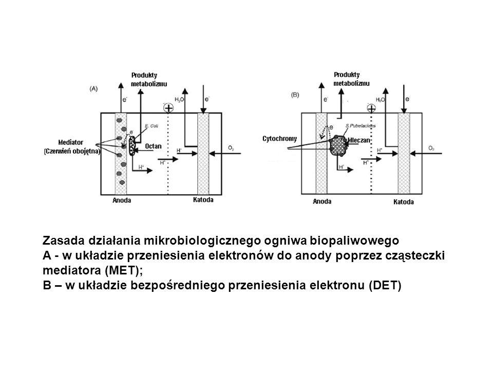 Zasada działania mikrobiologicznego ogniwa biopaliwowego A - w układzie przeniesienia elektronów do anody poprzez cząsteczki mediatora (MET); B – w uk