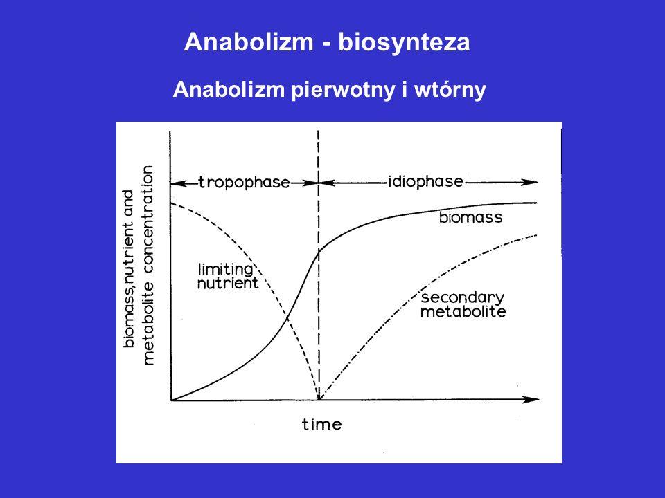 Anabolizm - biosynteza Anabolizm pierwotny i wtórny