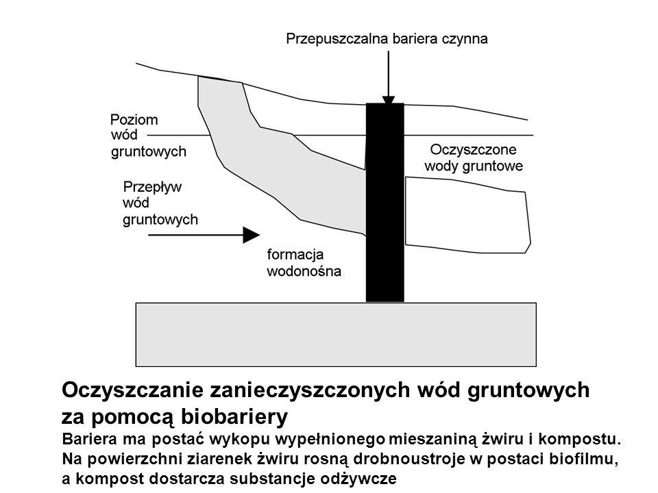 Oczyszczanie zanieczyszczonych wód gruntowych za pomocą biobariery Bariera ma postać wykopu wypełnionego mieszaniną żwiru i kompostu. Na powierzchni z