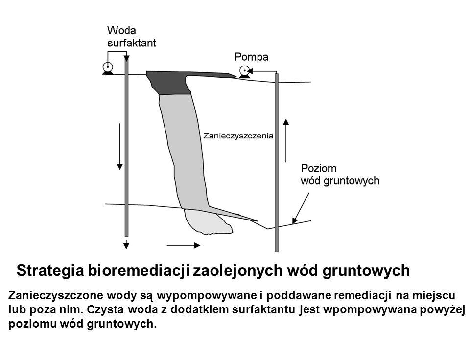 Strategia bioremediacji zaolejonych wód gruntowych Zanieczyszczone wody są wypompowywane i poddawane remediacji na miejscu lub poza nim. Czysta woda z