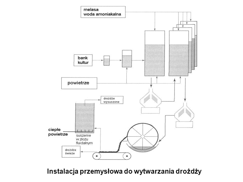 Instalacja przemysłowa do wytwarzania drożdży
