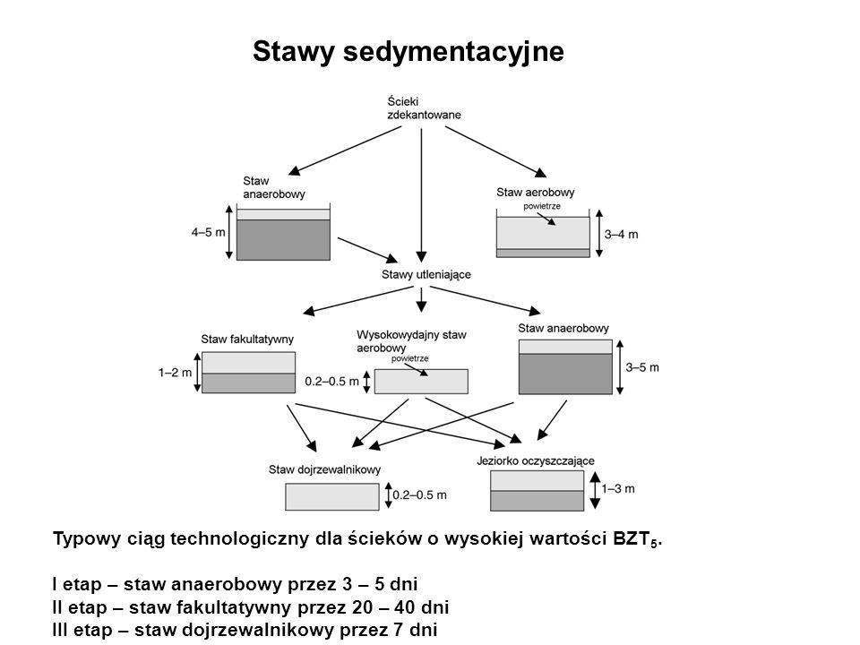 Stawy sedymentacyjne Typowy ciąg technologiczny dla ścieków o wysokiej wartości BZT 5. I etap – staw anaerobowy przez 3 – 5 dni II etap – staw fakulta