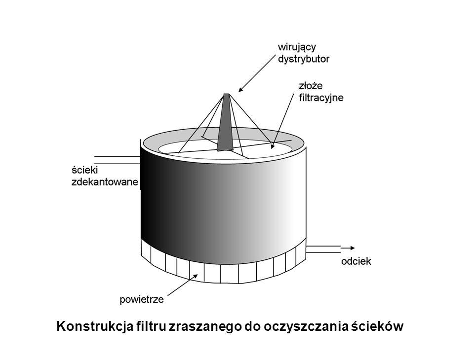 Konstrukcja filtru zraszanego do oczyszczania ścieków