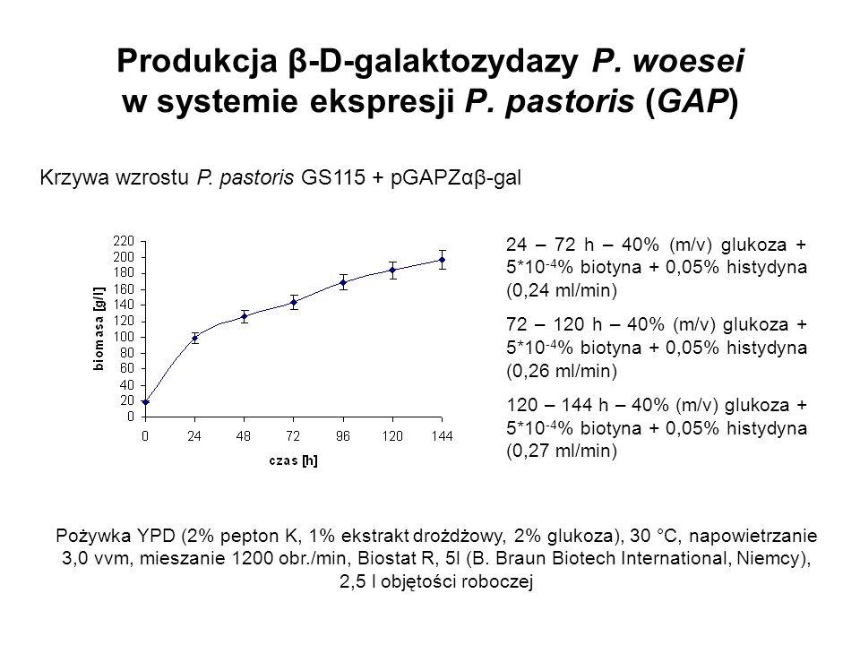 Produkcja β-D-galaktozydazy P. woesei w systemie ekspresji P. pastoris (GAP) Krzywa wzrostu P. pastoris GS115 + pGAPZαβ-gal Pożywka YPD (2% pepton K,